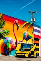 БМВ в Майами