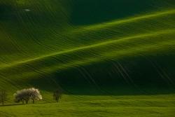 Зеленая Моравия